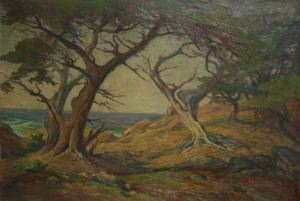 Image of Cypress Trees, Del Monte