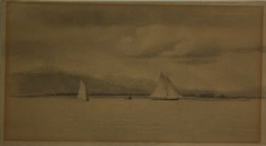 Image of Yacht Race