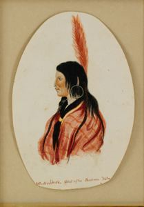Image of Wash'echick, Chief of the Shoshomas Tribe