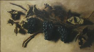 Image of Bunches of Grapes