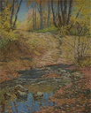 Image of MillCreek, Autumn Morning #1