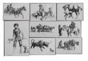 Image of Studies from My Youth: The Old Farm Remembered [set of 20 drawings]