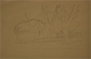 Image of Study of Trees and Buildings in California